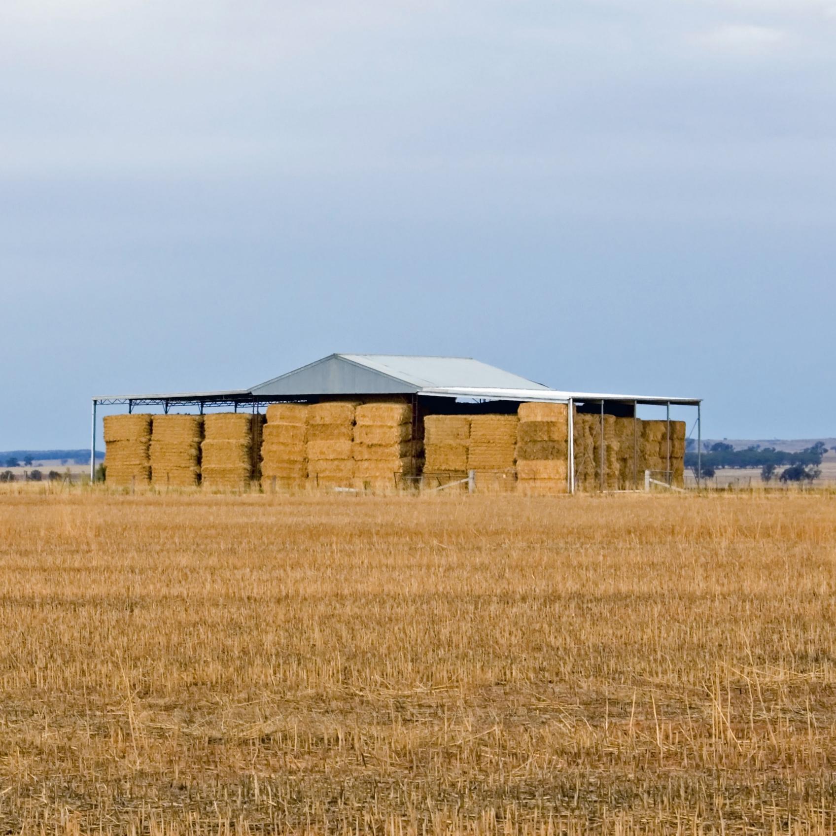 LARGE SQUARE BALE TWINE, Agri Novatex Australia