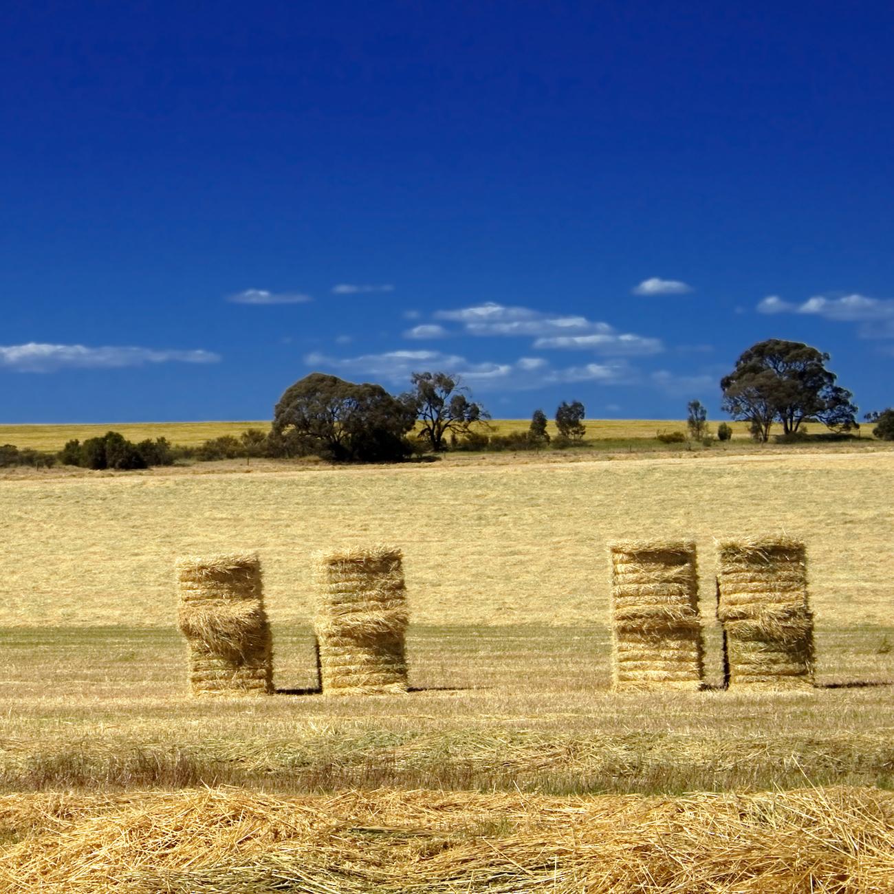 Square Bale Twine, Agri Novatex Australia